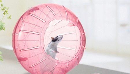 Прогулянковий куля для хом'яків (28 фото): для чого потрібен біговій кулька? Як навчити хом'ячка в ньому бігати?
